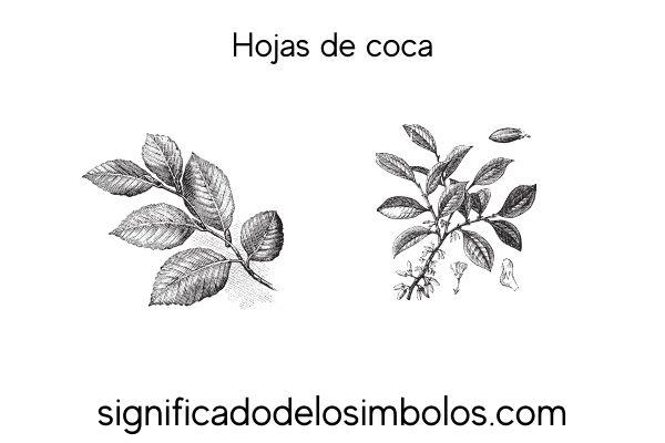 Simbolos incas hoja de coca
