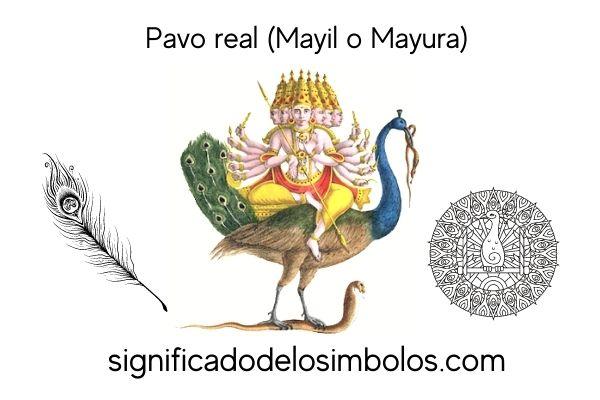 símbolos hindúes pavo real